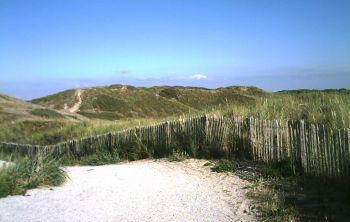 Dünenreservat